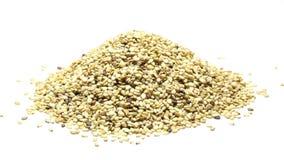 Rozsypisko wysuszeni organicznie sezamowi ziarna na bielu zbiory wideo
