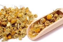 Rozsypisko wysuszony chamomile na drewnianej łyżce Fotografia Royalty Free