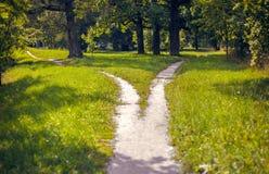 Rozszczepione ścieżki w parku Fotografia Stock