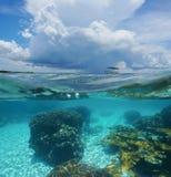 Rozszczepionego wizerunku podwodna i grożenie koralowa chmura Zdjęcia Royalty Free