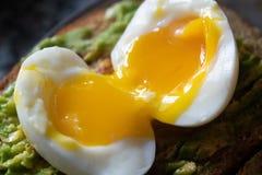 Rozszczepionej miękkiej części gotowany jajko na avocado obrazy royalty free