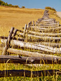 Rozszczepiony Sztachetowy ogrodzenie Obraz Royalty Free