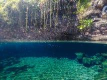 Rozszczepiony widok Piula jamy basenu pływacka dziura z rybim dopłynięciem zdjęcie royalty free