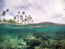 Rozszczepiony widoku przekrój poprzeczny woda morska i drzewka palmowe w Samoa, S obrazy stock