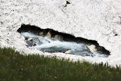 Roztapiający śnieg, Koednitz dolina w Austria Obrazy Stock