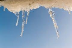 Roztapiający zima sople z niebieskim niebem obrazy royalty free
