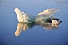 Roztapiający naturalny lód Obrazy Stock