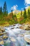 Roztoka Stream High Mountains Tatras Carpathians Royalty Free Stock Images