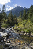 Roztoka Stream in Roztoka Valley. Tatra National Park. High Tatr Stock Photo