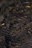 Roztrzaskujący ścienny grill Fotografia Royalty Free