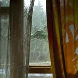 Roztrzaskujący okno w domu obraz stock