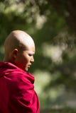 Rozważna poważnie młoda buddyjska magdalenka od Jelichun nunnery, pro Obrazy Royalty Free