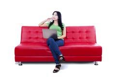 Rozważny żeński używa laptop na czerwonej kanapie - odosobnionej Zdjęcie Royalty Free
