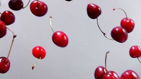 Rpe cherries fly on a white background stock footage