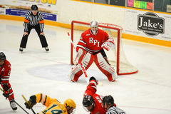 RPI Goalie #33 in NCAA Hockey Game Royalty Free Stock Photo