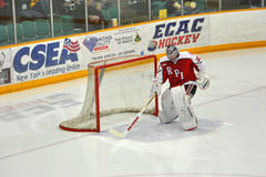 RPI goalkeeper warmup in NCAA Hockey Game Royalty Free Stock Image