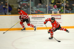 RPI #15 in NCAA Hockey Game Royalty Free Stock Image