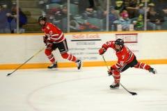 RPI #15 in NCAA Hockeyspel Royalty-vrije Stock Afbeelding