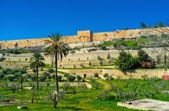 耶路撒冷rramparts  免版税图库摄影