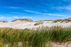 Rörande dyn parkerar nära Östersjön i Leba, Polen Royaltyfria Bilder