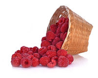Rraspberry berries in basket isolated white background. Rraspberry berries in basket isolated on white background Stock Image