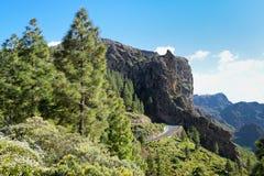Rroad Twisty in montagne in Gran Canaria Fotografia Stock Libera da Diritti