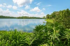 Réservoir supérieur de Seletar à Singapour Images libres de droits