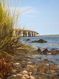 Råsopödrottnings solida bro Arkivbild