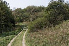 Запас долины RSPB Combe Стоковые Фотографии RF