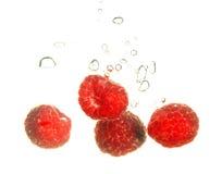 Rspberry splashing Stock Photography
