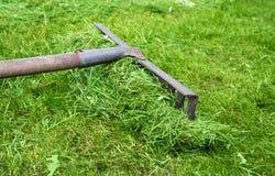 Râteau se trouvant sur l'herbe dans le jardin Image libre de droits