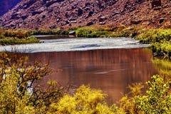 Rött brunt Coloradoflodenreflexionsabstrakt begrepp Moab Utah Royaltyfri Foto
