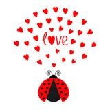 Rött kryp för flygdamfel med hjärtor Gulligt tecknad filmtecken Kort för ordförälskelsehälsning lyckliga valentiner för dag Vit b Arkivfoton