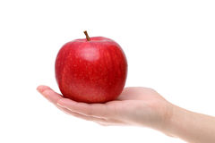 Rött äpple på handen Arkivfoto