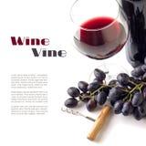 Rött vin i exponeringsglaset med druvor som isoleras på vit bakgrund Royaltyfri Foto