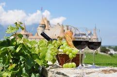 Rött vin och druvor mot en gammal slott Arkivfoto
