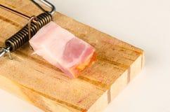 Råttfälla med bacon Arkivbild