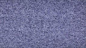 Ruído branco nenhum sinal do canal - tevê estática do ruído branco nenhum vídeo longo do sinal video estoque