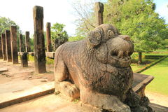 Ruína de Polonnaruwa em Sri Lanka Foto de Stock