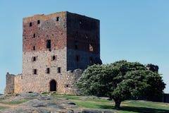Ruína do castelo de Hammershus Localizado na ilha Bornholm, Denmmark fotos de stock royalty free