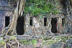 Ruína do edifício abandonado Fotografia de Stock Royalty Free