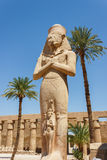 Ruínas antigas do templo de Karnak em Egipto Foto de Stock Royalty Free