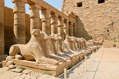 Ruínas antigas do templo de Karnak em Egipto Fotos de Stock Royalty Free