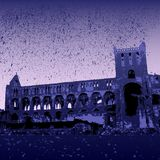 Ruínas da abadia de Jedburgh Imagens de Stock Royalty Free