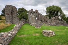 Ruínas da abadia da polegada em Irlanda do Norte imagem de stock