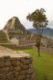 Ruínas da cidade Incan Machu Picchu e Wayna Picchu Lost perto de Cusco no Peru imagens de stock royalty free
