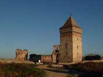 Ruínas da fortaleza medieval na Sérvia Imagens de Stock Royalty Free