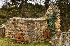 Ruínas da parede do tejn do ¡ de LibÅ do castelo foto de stock