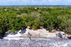 Ruínas de Calakmul em Campeche, México fotografia de stock royalty free