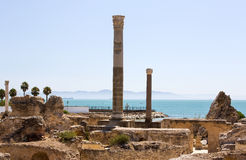 Ruínas de Carthage Imagem de Stock Royalty Free